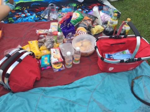 Picnic basket goodies and more!