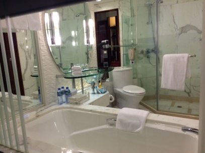 The bathroom in the main room - the other toilet only had a WC