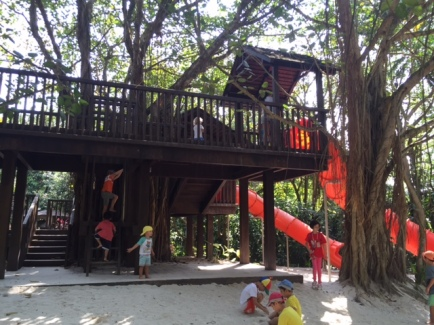 Huge treehouse!