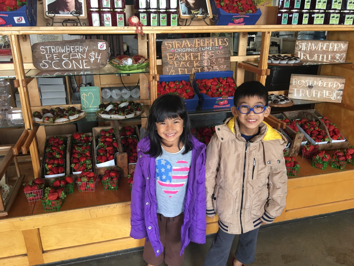US California Trip (May 2017) - SFO to Monterey -Day 5 (Swanton Berry Farm, 99bottles and Monterey Plaza Hotel & Spa)